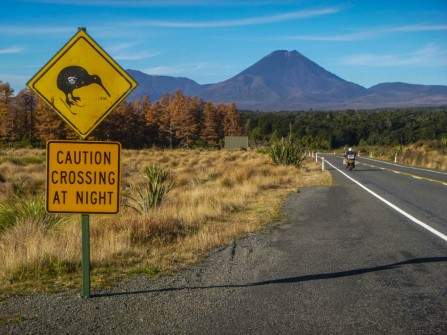 Over the Tongariro Crossing